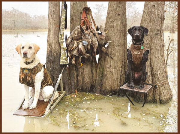 1st Place: Baylor and Rose, Labrador Retrievers, submitted by Cameron Moss of Leland